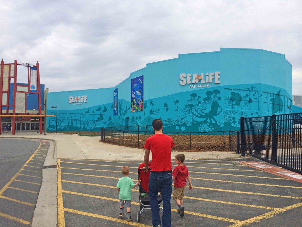 The Sea Life Aquarium is specifically designed for kids with a touch ...