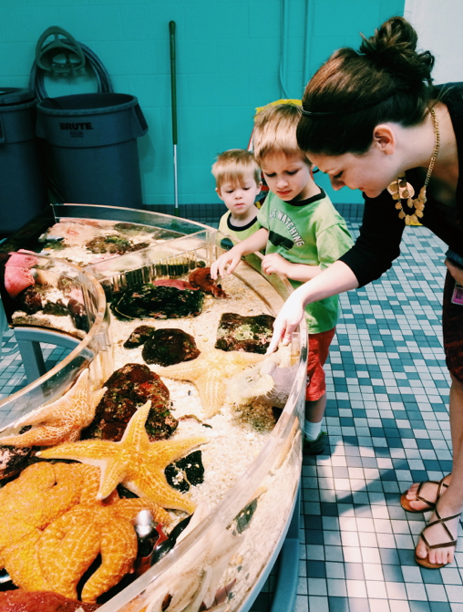Behind the Scene touch tank