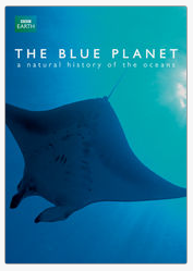 The Blue Planet on Netflix