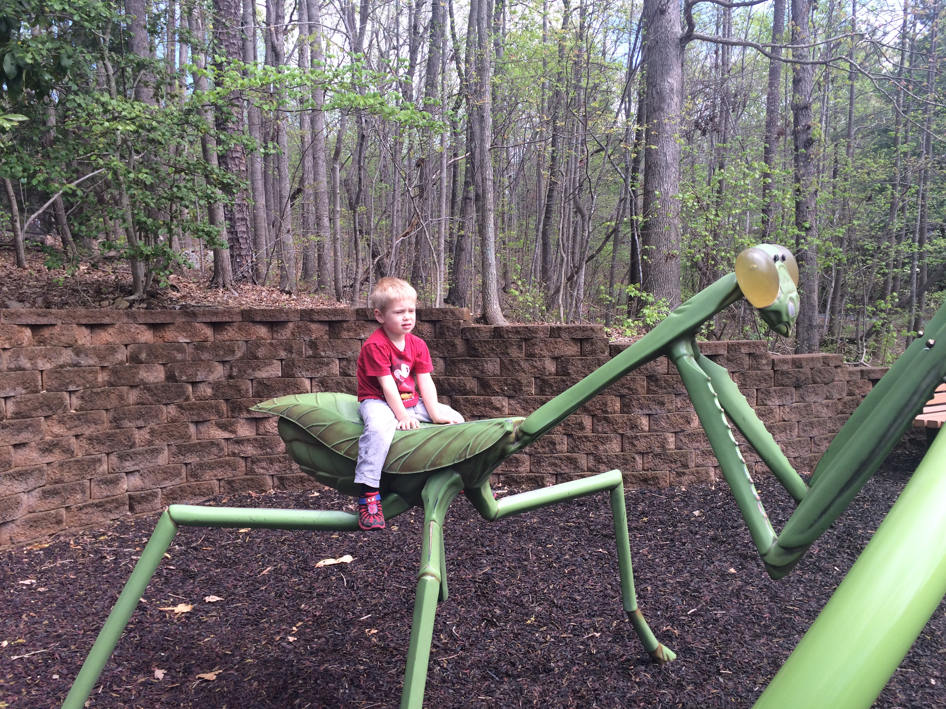 Simon's not so sure about this giant bug